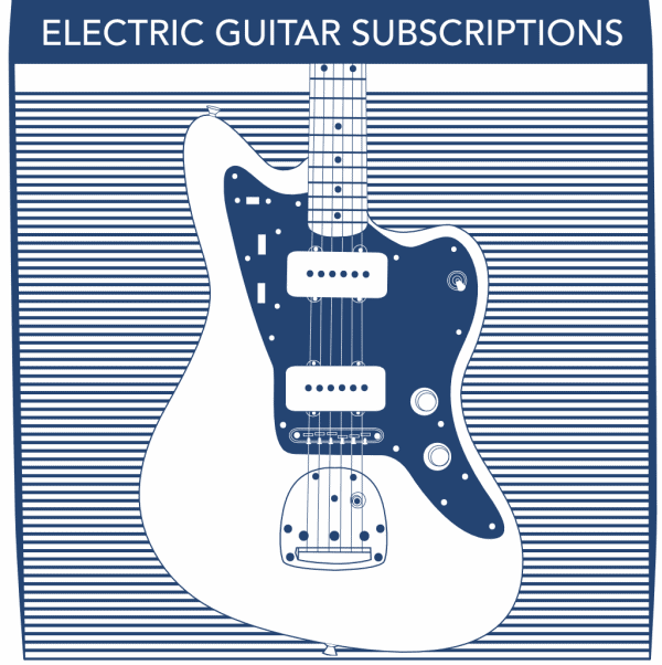 Electric Guitar String Subscriptions